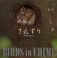 写真集さえずり 愛媛の鳥たち